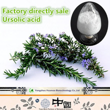 Best selling products 100% natural organic Ursolic Acid 77-52-1