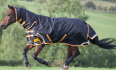 Latest Style Combo Waterproof Horse Rug