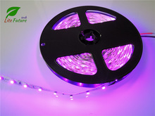 SMD3528 Purple LED Strip Light Flexible