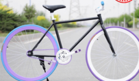 700C full aluminum alloy parts bamboo frame single speed fixed gear bike CHINA Austria design