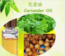Pure Natural Cilantro Oil For Cosmetic Products
