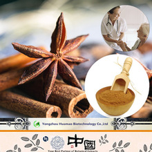 China Manufacturer Supply 100% Pure Natural Organic Cinnamon Bark Extract