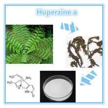 China Factory Lowest Price Powder Huperzine Serrate Extract Huperzine A In Herbal Extract