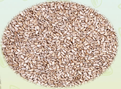 2014 Hot Sale New Crop Sunflower Seed Kernels