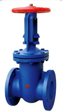 Flange Ends Parallel Double Disc Gate Valve