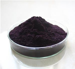 Natural Acai Berry Extract 5%-70%Anthocyanin/acai berry extract