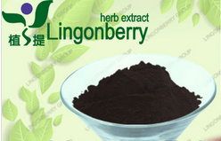 Organic purple sweet potato powder anthocyanin 5%-25% UV