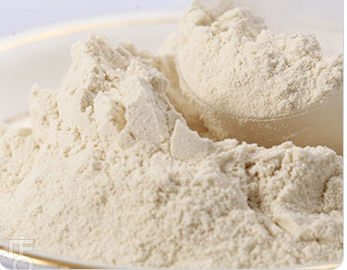 (GMP certified) Plant protein Meal replacement powder