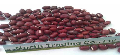 Adzuki Bean/Small Red Beans( New crop,Heilongjiang origin, Hps ,Polished)