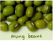 Green Mung Bean Size 3.0mm