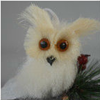 nature bird decoration natural owl decoration