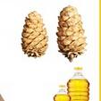 pine nut essential oil