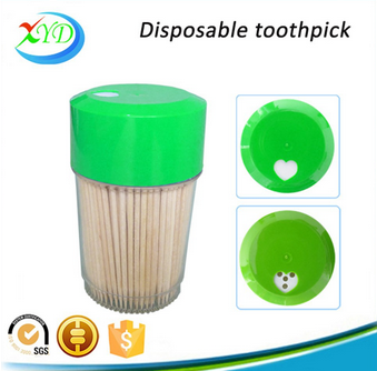 New products plastic bottle toothpick for sale