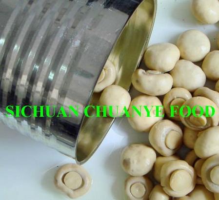 Canned Mushroom Canned Food