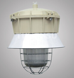 Manufacture Of Induction Explosion Proof Lamp