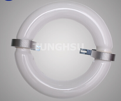 High Power Ring New Design Induction Lamps