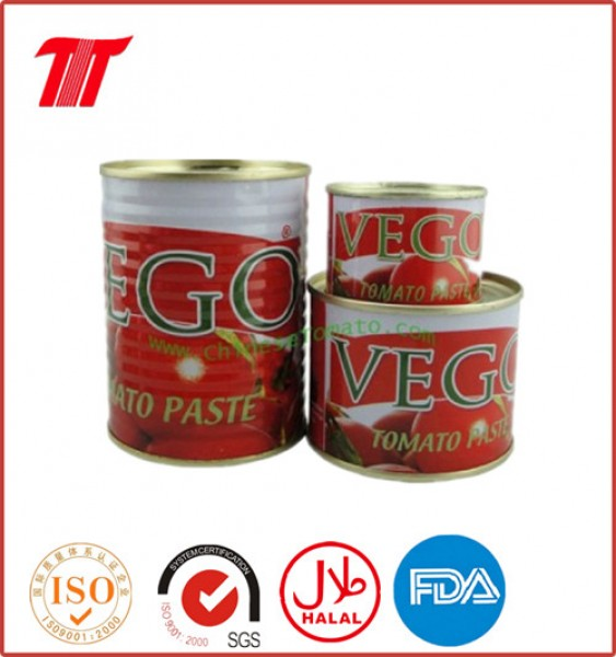 Canned Tomato Paste-210g