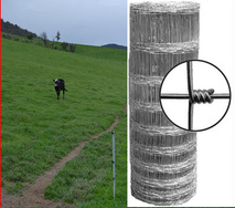 Corrosion Resistant 2.5mm/2.0mm Grassland Field Fence, Farme Fence for Cattle Fence