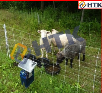 Best Prices Hinge Joint Galvanized Goat Fence
