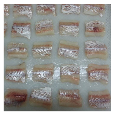 Frozen Pacific Cod Fillet