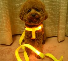flashing leash light up led cat colla plastic dog collars
