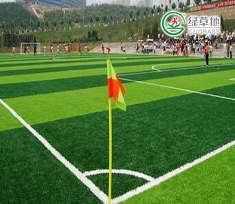 China cheap plastic artificial sports grass artificial grass for football