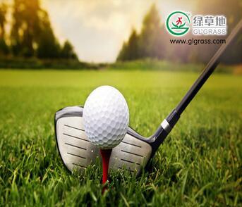 Wholesale cheap PE PP artificial sports grass artificial golf grass