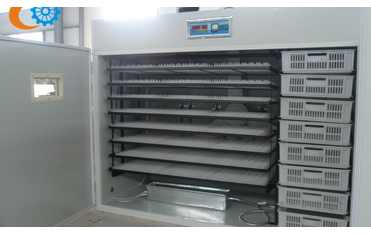 Best Quality Ouchen 2000 commercial egg incubator