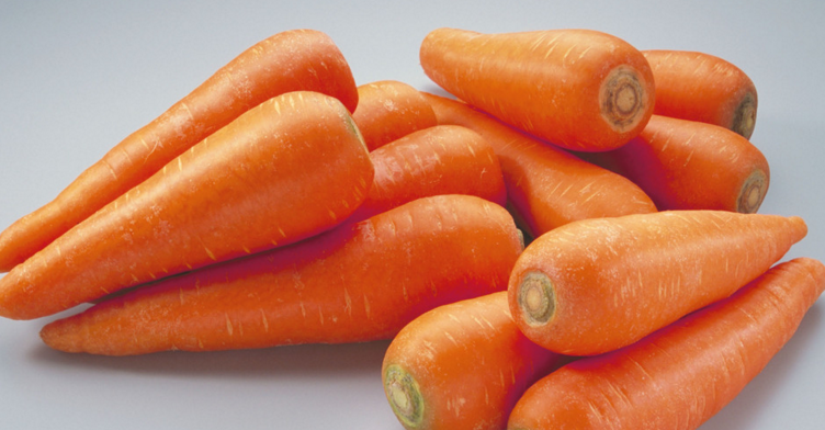 Carrot in High Quality