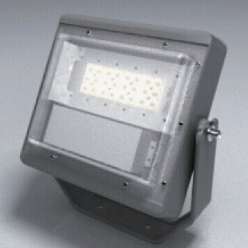 SW TGB Type B LED VERSA LIGHT LED Flood Light