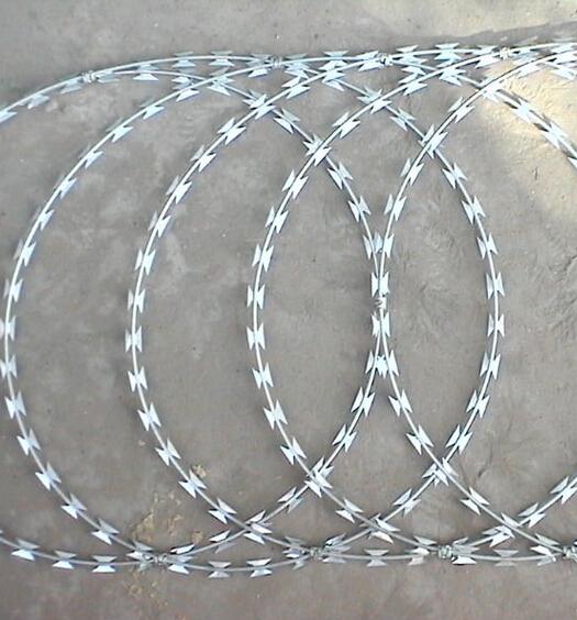 Galvanized Concertina Razor Barbed Wire