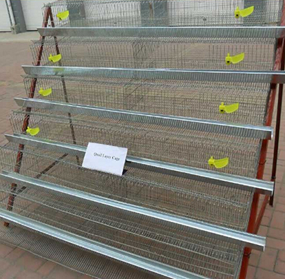 2016 new promotions trade assurance breeding quail cages for feeding system