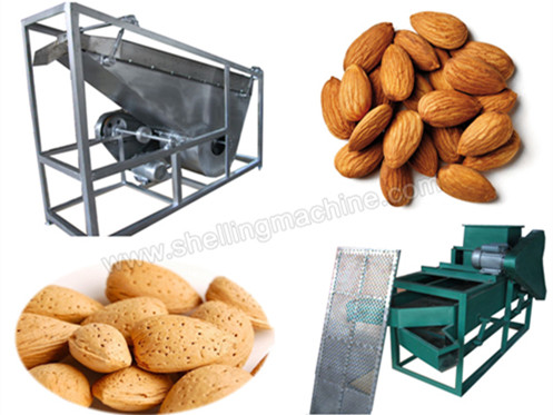 (200-300 kg/h)Mini Almond Shelling Machine
