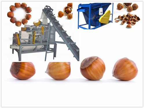 1000 kg/h Hazelnut Shelling & Separating Machine