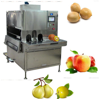 Fruit Peeling Machine