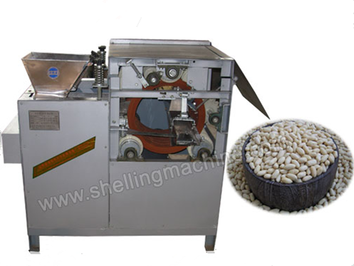 Wet Type Peanuts Peeling Machine
