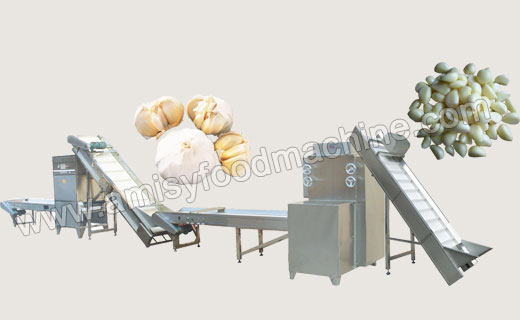Garlic Peeling Production Line
