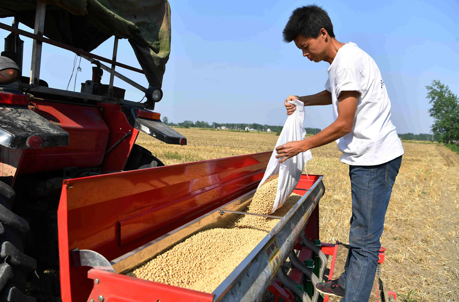 China's agricultural product wholesale prices surge