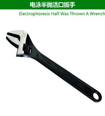 Electrophoresis Half Was Thrown A Wrench