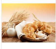 wholesale bread flour / wheat flour for bread