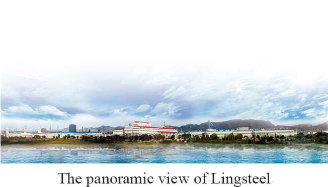 Ling Yuan Iron and Steel International Trading CO., Limited