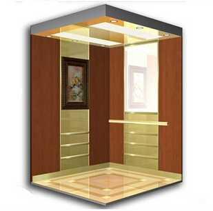 Villa Luxury Home Elevator Lift
