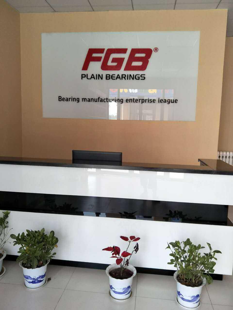 FGB Spherical Plain Bearings GE30ES GE30DO Plain Bearings With Competitve Price