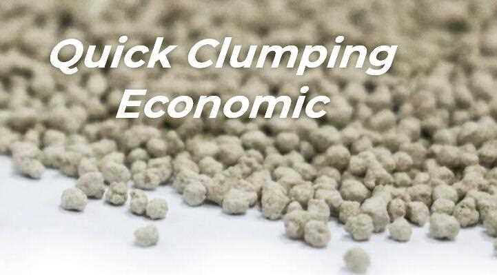 QUICK CLUMPING ECONOMIC cat litter