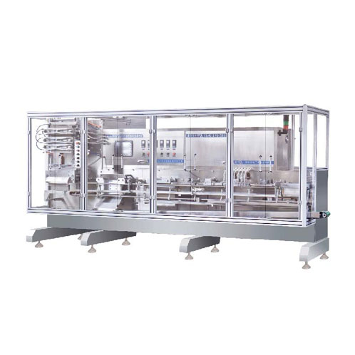 DGS-350 liquid filling packing machine