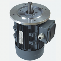 MS series aluminum housing three-phase electric motors