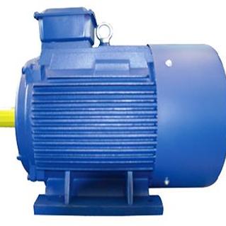 Y2 Series Low-Voltage Motor