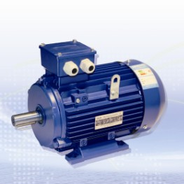 LE Series Three-phase Asynchronous Motor