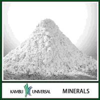 China origin caustic calcined magnesite powder price