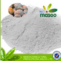 bulk wholesale china edible chestnut powder